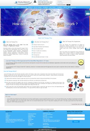 Business - Responsive Website
